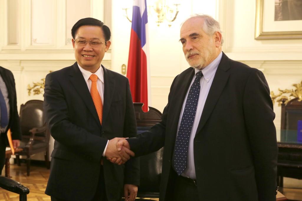 Phó Thủ tướng Vương Đình Huệ dâng hoa tại Công viên Hồ Chí Minh (Chile) - ảnh 3