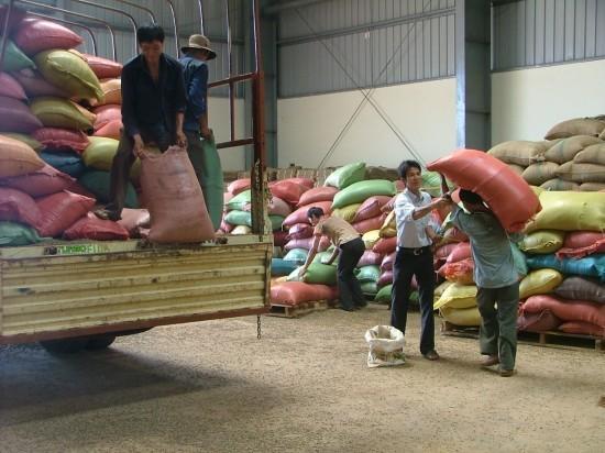 IFC và VPBank bảo lãnh 50 triệu USD cho Tập đoàn Tân Long, góp phần đa dạng hóa hoạt động thu mua nông sản.  Ảnh Internet