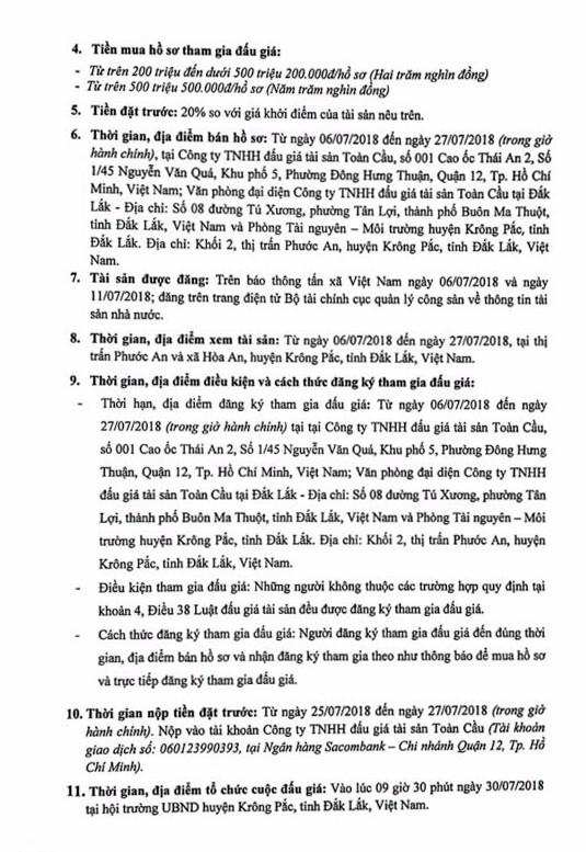 Đấu giá quyền sử dụng đất tại huyện Krông Pắc, Đắk Lắk - ảnh 2