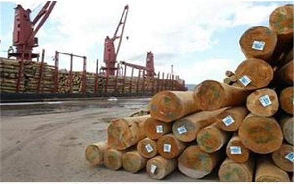 Cáo buộc được cho là vô căn cứ của EIA có thể ảnh hưởng xấu đến xuất khẩu gỗ của Việt Nam (Ảnh minh họa/VOV)