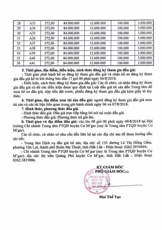 Đấu giá quyền sử dụng đất tại huyện Cư M'gar, Đắk Lắk - ảnh 2