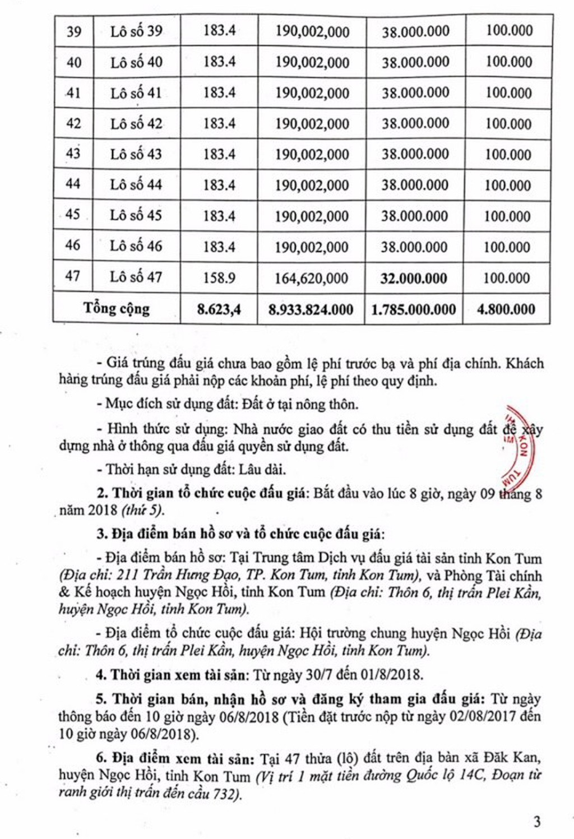 Đấu giá quyền sử dụng đất tại huyện Ngọc Hồi, Kon Tum - ảnh 3