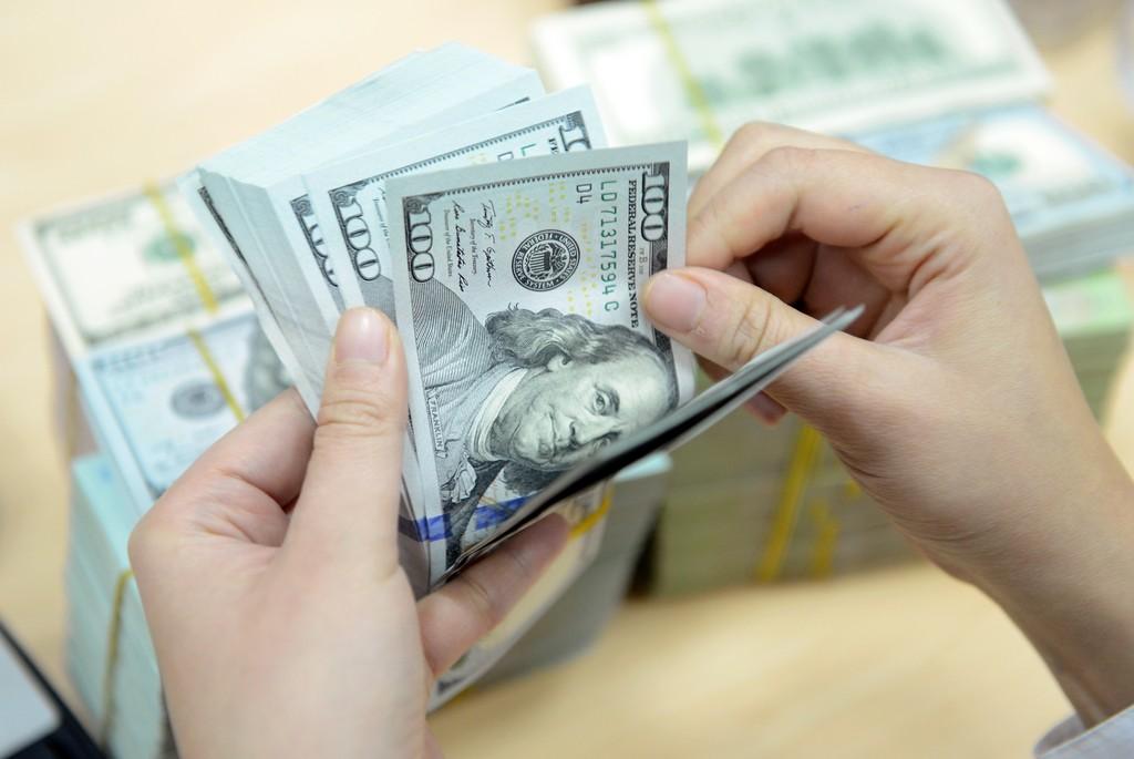 Tại Hội thảo, ác chuyên gia sẽ phân tích về tỷ giá hối đoái cân bằng cơ bản của 4 cặp ngoại tệ . Ảnh minh họa: Internet