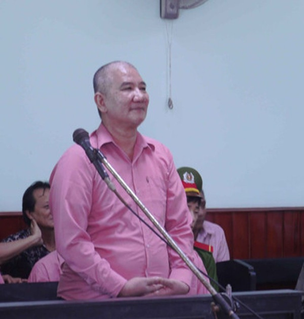 Xét xử vụ phá rừng lớn nhất Bình Định: Giám đốc doanh nghiệp thừa nhận phá rừng - ảnh 1