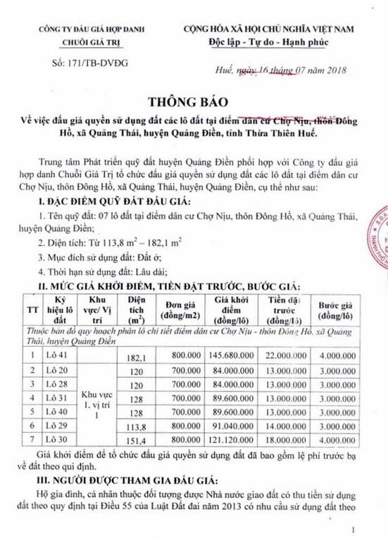 Đấu giá quyền sử dụng đất tại huyện Quảng Điền, Thừa Thiên Huế - ảnh 1