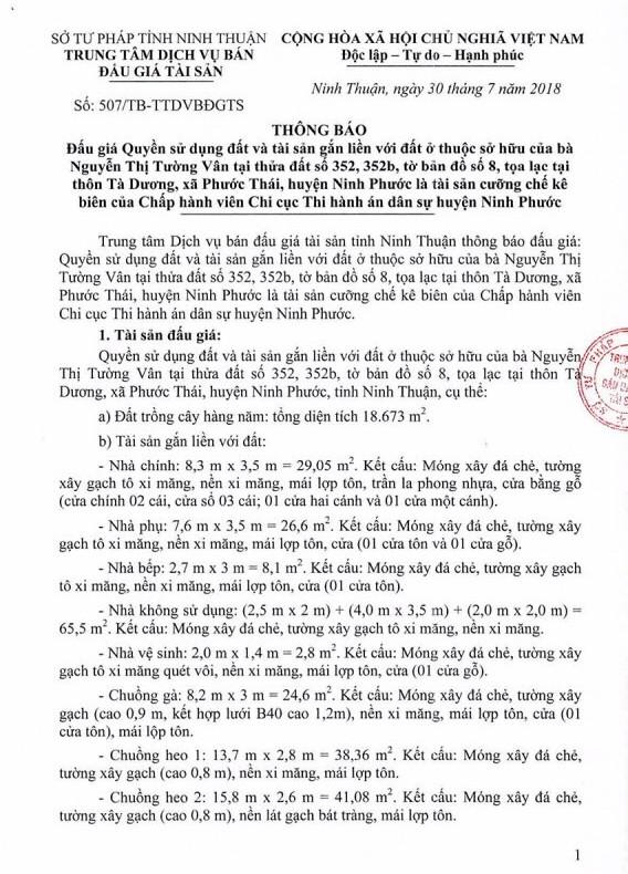 Đấu giá quyền sử dụng đất và tài sản gắn liền với đất tại huyện Ninh Phước, Ninh Thuận - ảnh 1