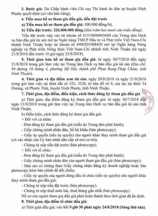 Đấu giá quyền sử dụng đất và tài sản gắn liền với đất tại huyện Ninh Phước, Ninh Thuận - ảnh 3