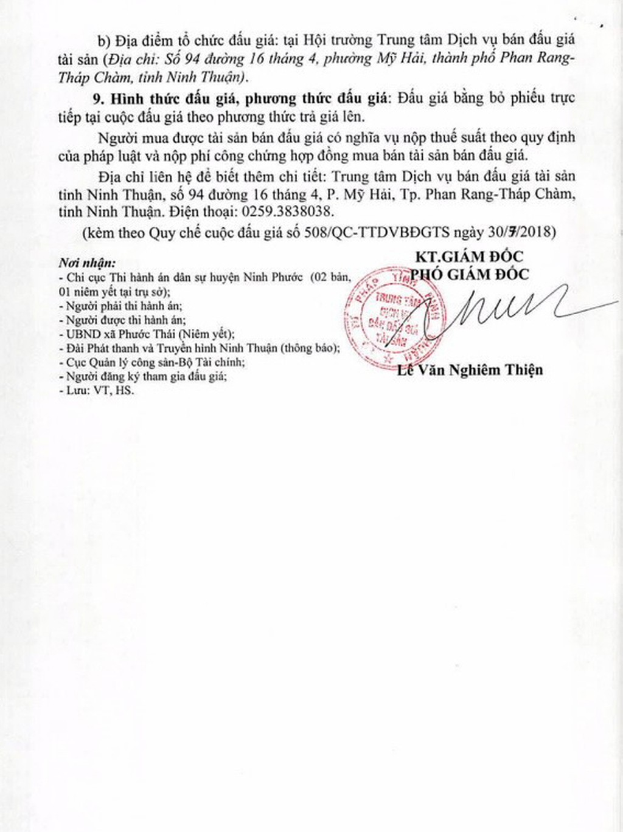 Đấu giá quyền sử dụng đất và tài sản gắn liền với đất tại huyện Ninh Phước, Ninh Thuận - ảnh 4