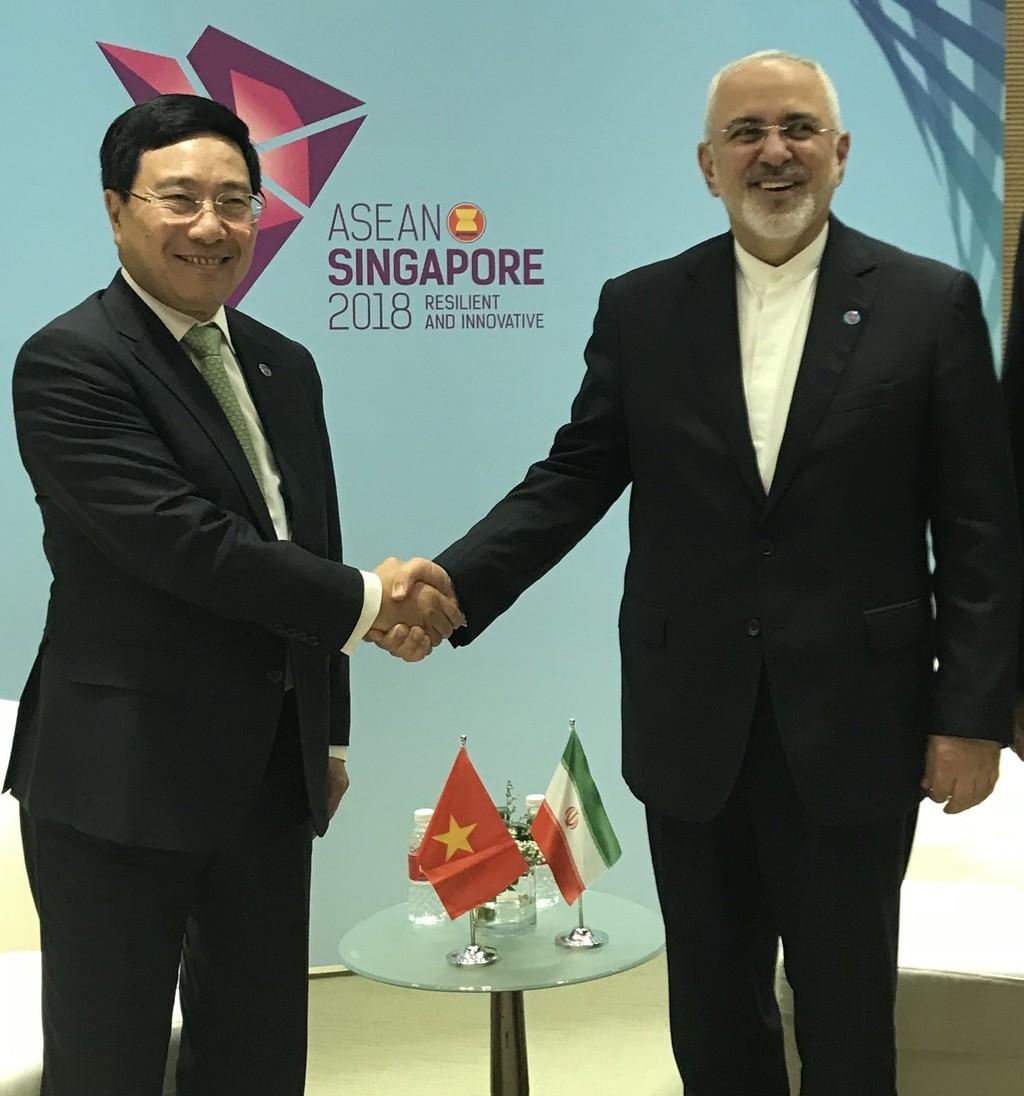 Phó Thủ tướng Phạm Bình Minh gặp Ngoại trưởng Nhật Bản, Iran - ảnh 1