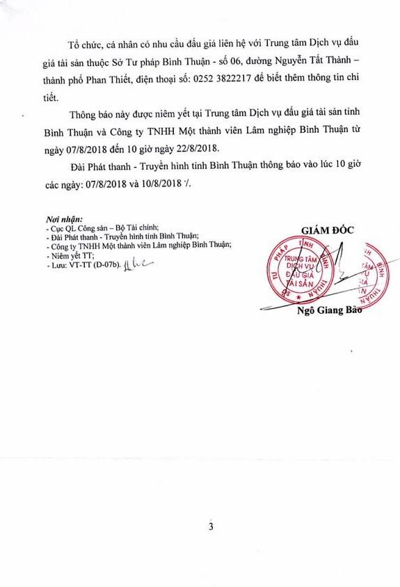 Ngày 23/8 đấu giá gỗ rừng trồng bạch đàn tại Bình Thuận - ảnh 3