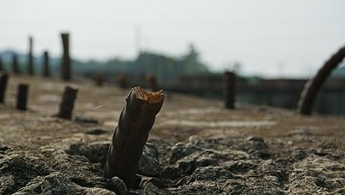 Dự án cầu 55 tỷ đồng bỏ hoang nhiều năm ở Thanh Hóa - ảnh 1