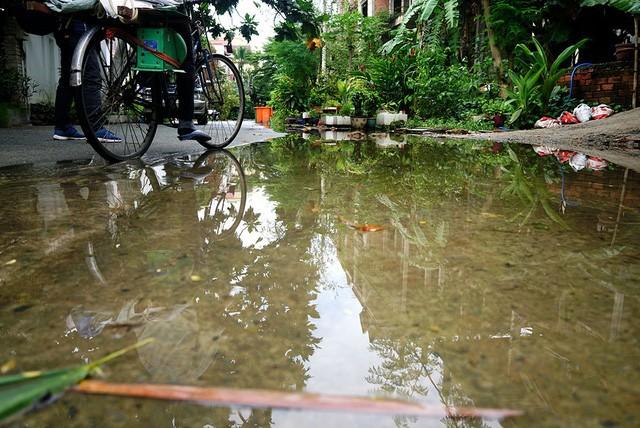 Cận cảnh nhem nhuốc của khu biệt thự bị bỏ hoang gần 10 năm giữa lòng Sài Gòn - ảnh 12