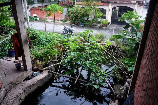 Cận cảnh nhem nhuốc của khu biệt thự bị bỏ hoang gần 10 năm giữa lòng Sài Gòn - ảnh 3