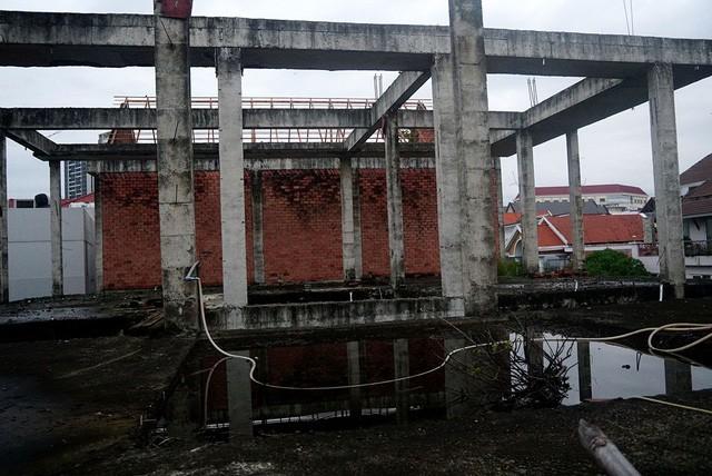 Cận cảnh nhem nhuốc của khu biệt thự bị bỏ hoang gần 10 năm giữa lòng Sài Gòn - ảnh 4
