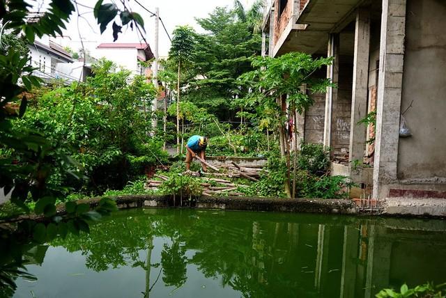Cận cảnh nhem nhuốc của khu biệt thự bị bỏ hoang gần 10 năm giữa lòng Sài Gòn - ảnh 8