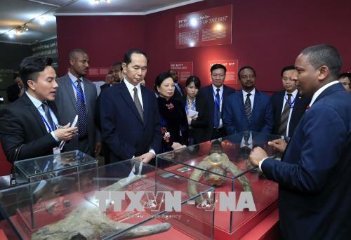 Thúc đẩy hợp tác nhiều mặt với Ethiopia - ảnh 1
