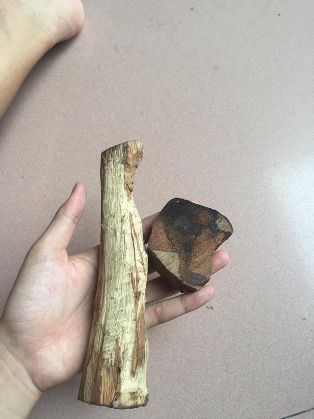 15 năm buôn gỗ sưa vẫn bị lừa mất trắng cả tỷ bạc - ảnh 1