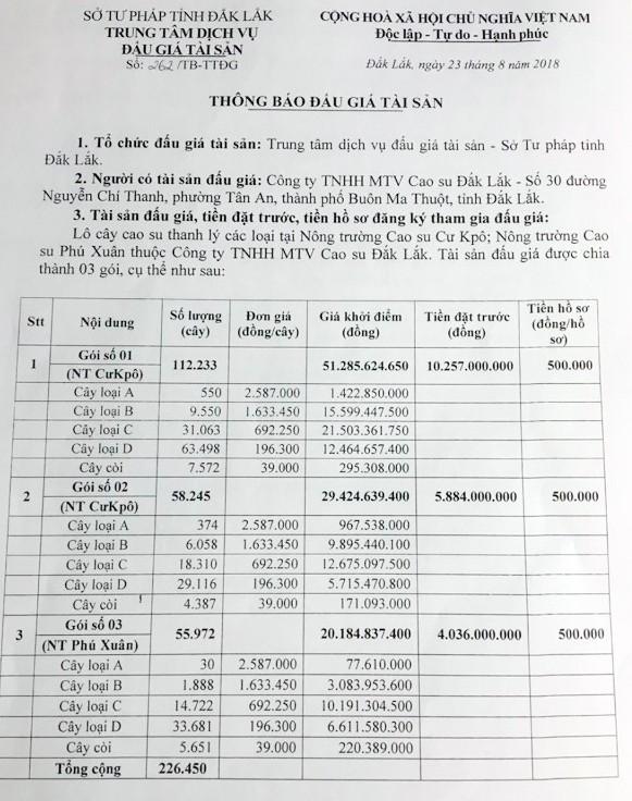 Ngày 14/9/2018, đấu giá lô cây cao su thanh lý tại Đắk Lắk - ảnh 1