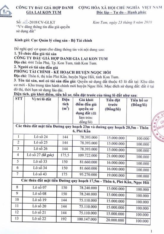 Ngày 20/9/2018, đấu giá quyền sử dụng 43 lô đất tại huyện Ngọc Hồi, Kon Tum - ảnh 1