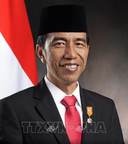 Tổng thống Cộng hòa Indonesia bắt đầu thăm cấp Nhà nước Việt Nam - ảnh 1