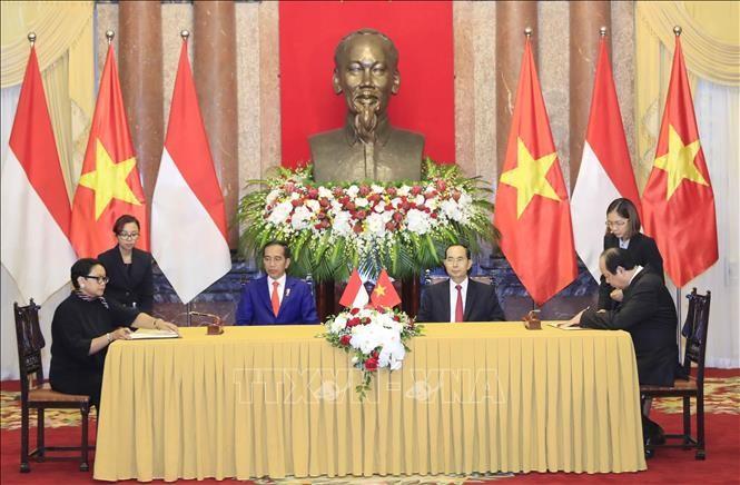 Chủ tịch nước hội đàm với Tổng thống Indonesia - ảnh 1