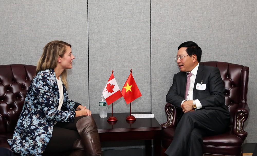 Nhiều nước khẳng định ủng hộ Việt Nam tại Liên Hợp Quốc - ảnh 4