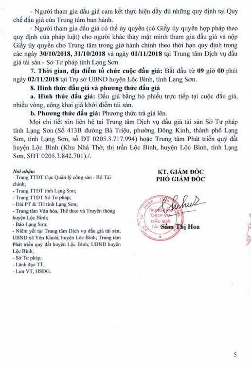 Ngày 2/11/2018, đấu giá quyền sử dụng đất tại huyện Lộc Bình, tỉnh Lạng Sơn - ảnh 5