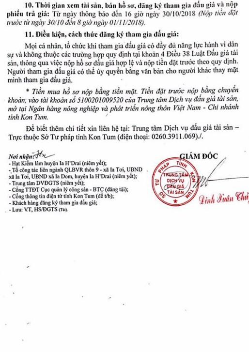 Ngày 02/11/2018, đấu giá 58,688 m3 gỗ tròn, xẻ các loại tại tỉnh Kon Tum - ảnh 2