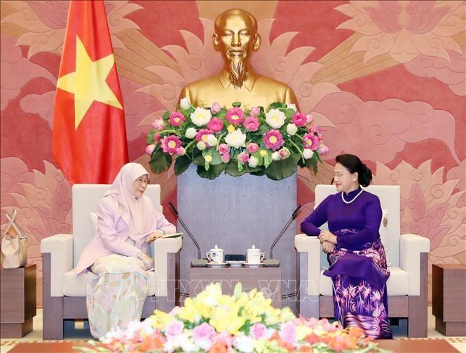 Chủ tịch Quốc hội Nguyễn Thị Kim Ngân tiếp Phó Thủ tướng Malaysia Wan Azizah. Ảnh: TTXVN