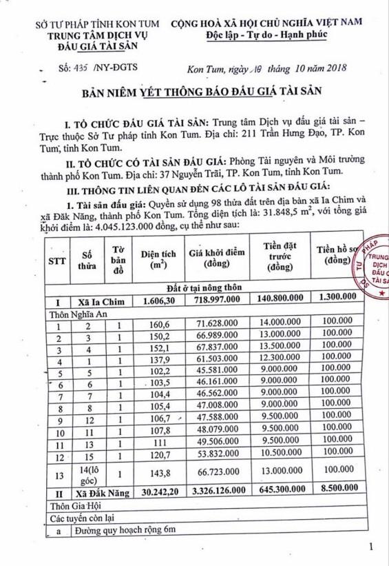 Ngày 15/11/2018, đấu giá quyền sử dụng đất tại thành phố Kon Tum, tỉnh Kon Tum - ảnh 1