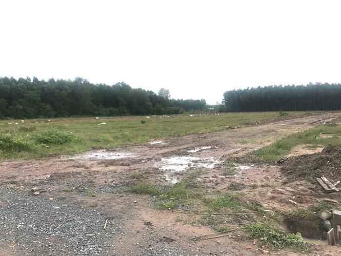 Một khu đất nông nghiệp được Công ty cổ phần Địa ốc Alibaba giới thiệu là dự án Alibaba Phước Long 16
