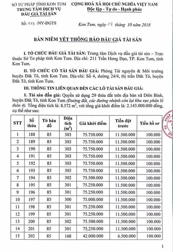 Ngày 22/11/2018, đấu giá quyền sử dụng đất tại huyện Đắk Tô, tỉnh Kon Tum - ảnh 1