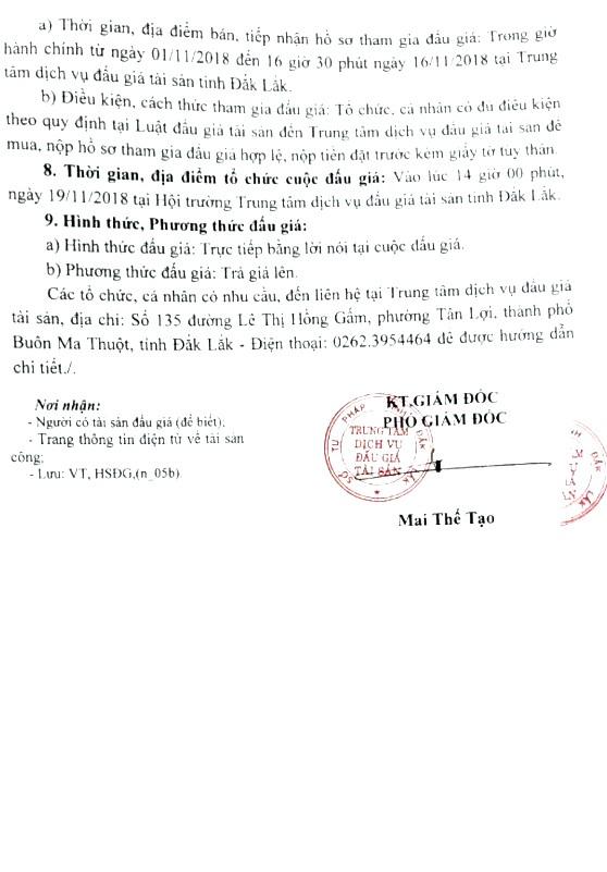 Ngày 19/11/2018, đấu giá dây chuyền chế biến café quả khô tại tỉnh Đắk Lắk - ảnh 3
