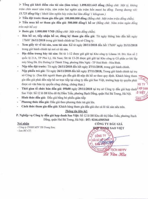 Ngày 29/11/2018, đấu giá vật tư thiết bị thanh lý tại Dự án thủy điện Trung Sơn   - ảnh 2