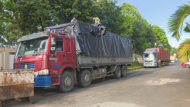 Đắk Lắk: Bắt giữ 2 xe tải lắp biển số giả vận chuyển hàng chục khối gỗ lậu - ảnh 1