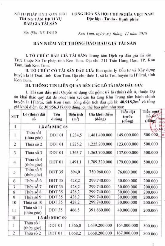 Ngày 13/12/2018, đấu giá quyền sử dụng 67 lô đất tại huyện Ia H'Drai, tỉnh Kon Tum  - ảnh 1