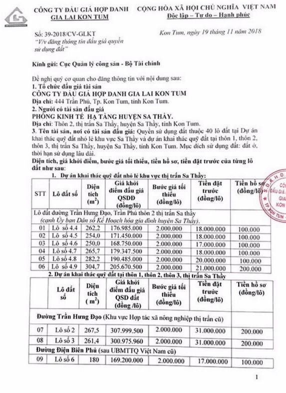 Ngày 14/12/2018, đấu giá quyền sử dụng 40 lô đất tại huyện Sa Thầy, tỉnh Kon Tum   - ảnh 1
