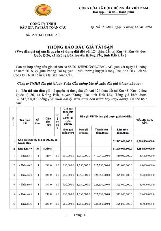 Ngày 3/1/2019, đấu giá quyền sử dụng đất tại huyện Krông Pắc, tỉnh Đắk Lắk - ảnh 1
