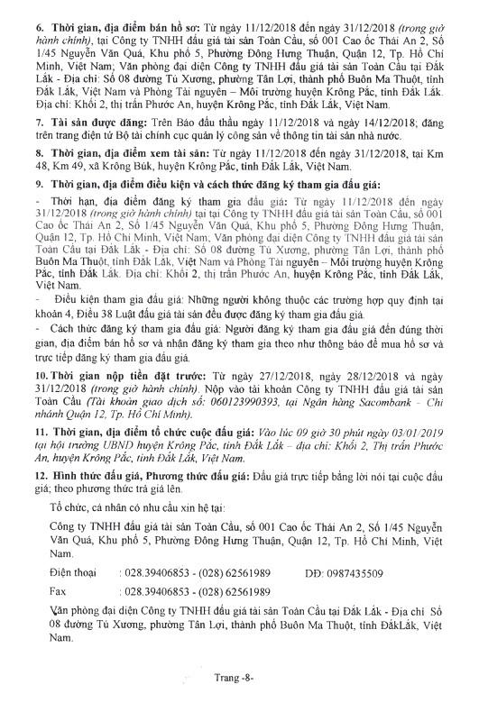 Ngày 3/1/2019, đấu giá quyền sử dụng đất tại huyện Krông Pắc, tỉnh Đắk Lắk - ảnh 8