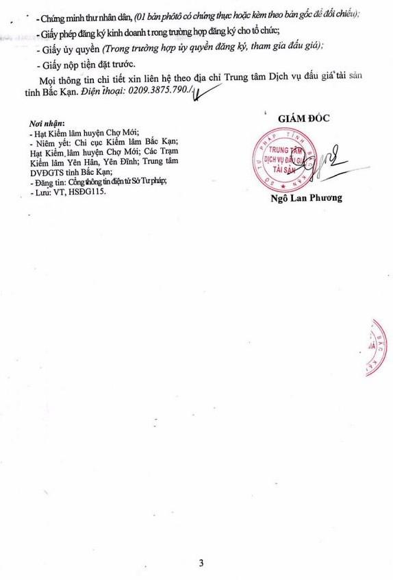 Ngày 21/12/2018, đấu giá gỗ tròn, gốc, rễ tại tỉnh Bắc Kạn - ảnh 3