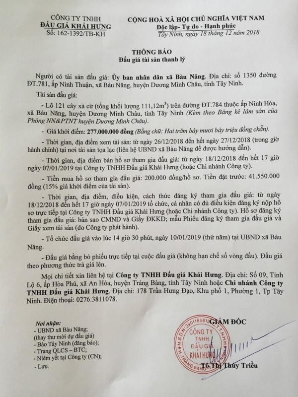 Ngày 10/01/2019, đấu giá 121 cây xà cừ tại tỉnh Tây Ninh - ảnh 1
