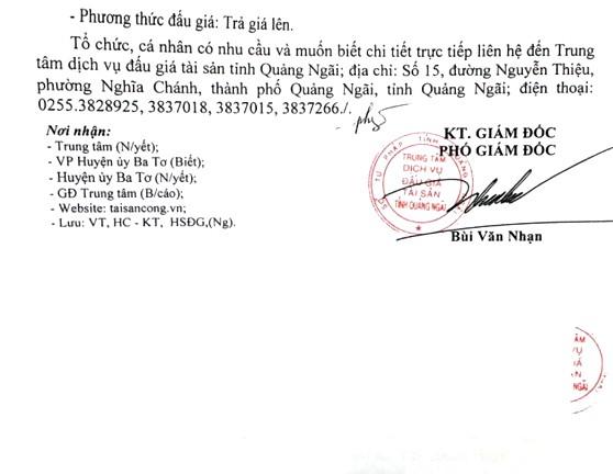 Ngày 10/1/2019, đấu giá xe ô tô tại tỉnh Quảng Ngãi - ảnh 2