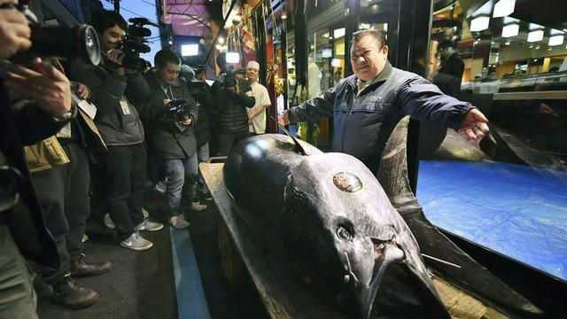 Ông Kimura đứng cạnh con cá ngừ vây xanh giá kỷ lục gần 70 tỷ đồng. (Nguồn: Koki Sengoku/Kyodo News via AP)