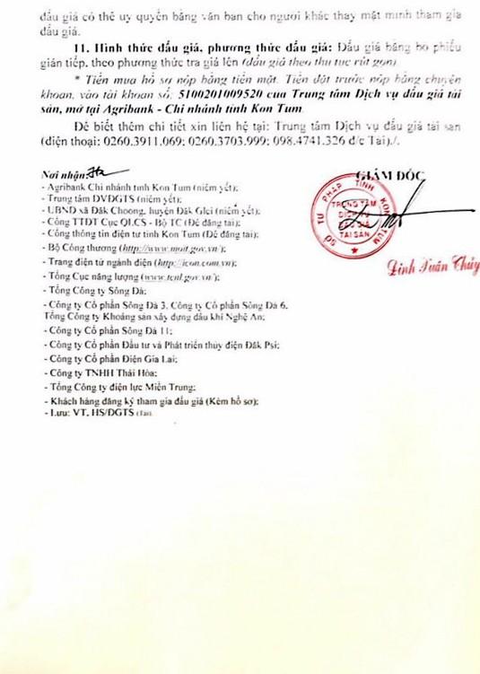 Ngày 18/01/2019, đấu giá quyền sử dụng đất, quyền sở hữu nhà và tài sản gắn liền với đất tại huyện Đăk Glei, tỉnh Kon Tum - ảnh 2
