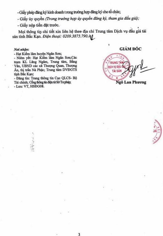 Ngày 24/01/2019, đấu giá gỗ tại tỉnh Bắc Kạn - ảnh 3