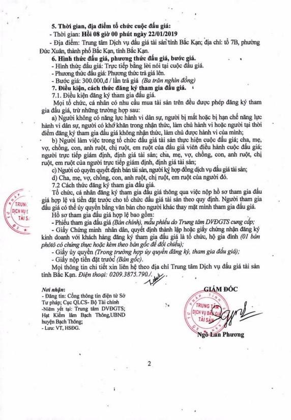 Ngày 22/01/2019, đấu giá gỗ tại tỉnh Bắc Kạn - ảnh 2
