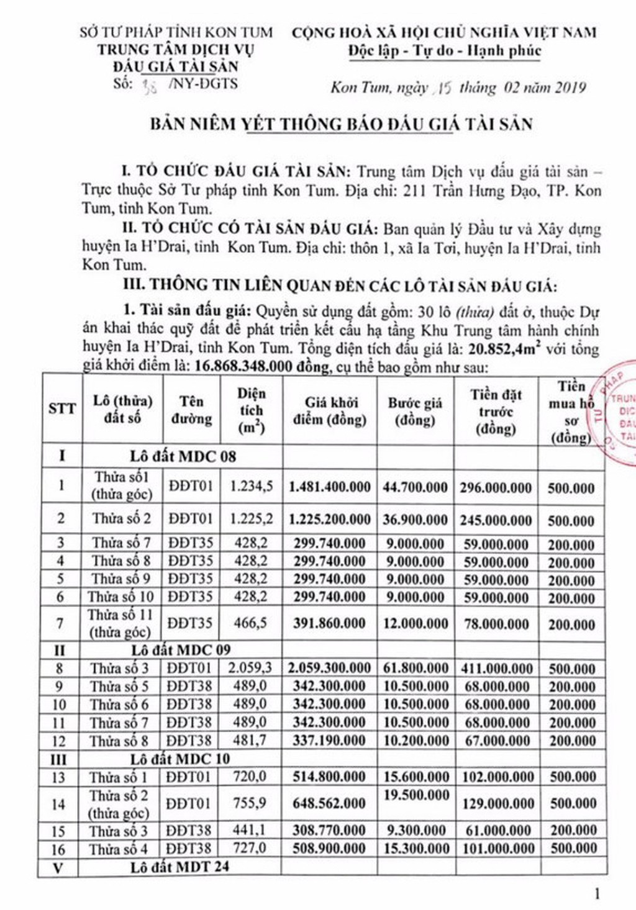Ngày 11/3/2019, đấu giá quyền sử dụng 30 lô đất tại huyện Ia H'Drai, tỉnh Kon Tum - ảnh 1