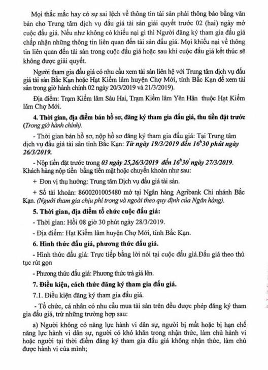Ngày 28/3/2019, đấu giá lô gỗ tròn tại tỉnh Bắc Kạn - ảnh 2