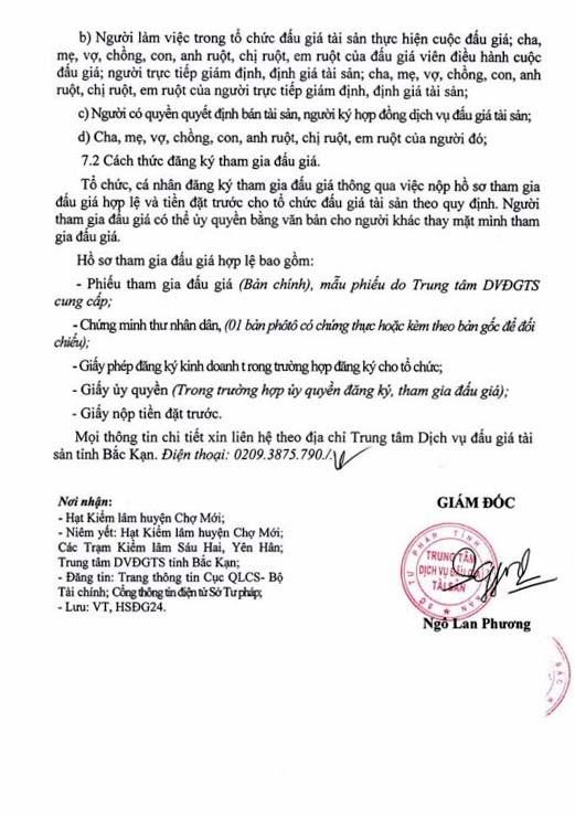 Ngày 28/3/2019, đấu giá lô gỗ tròn tại tỉnh Bắc Kạn - ảnh 3