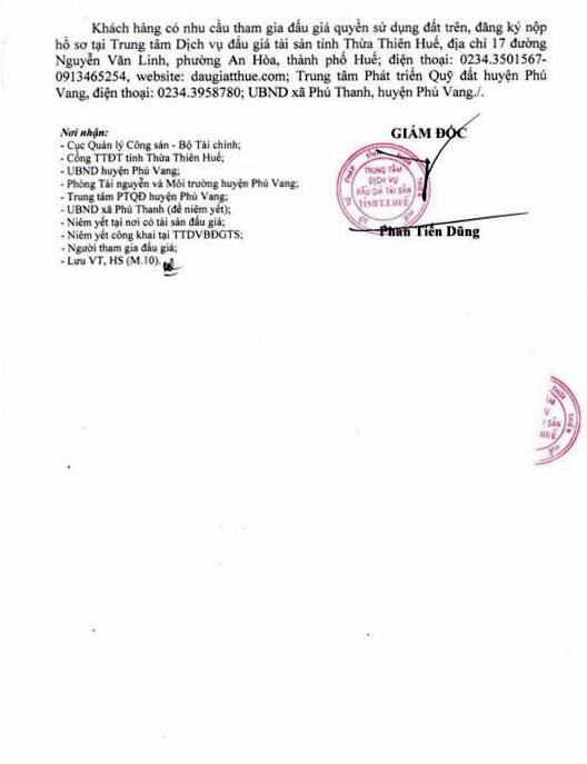 Ngày 18/4/2019, đấu giá quyền sử dụng đất tại huyện Phú Vang, tỉnh Thừa Thiên Huế - ảnh 3